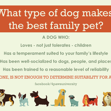 WHAT KIND OF DOG MAKES THE BEST FAMILY PET?