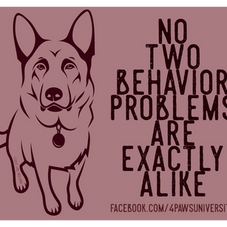 NO TWO BEHAVIOR PROBLEMS ARE EXACTLY ALIKE