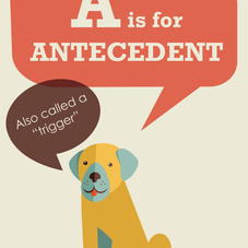 A IS FOR ANTECEDENT