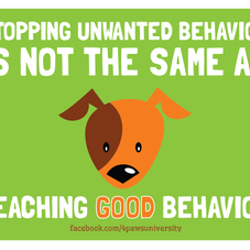 STOP BAD BEHAVIOR