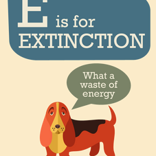 E IS FOR EXTINCTION