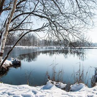 Parc des Bruyères sous la neige
