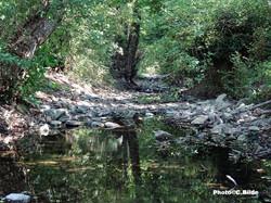 Ruisseau Malière