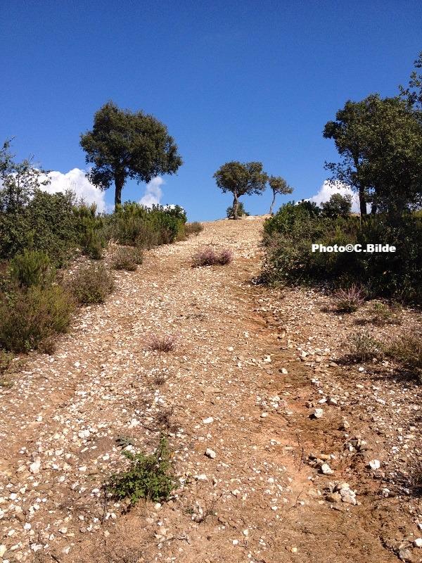 Montée chemin randonnée