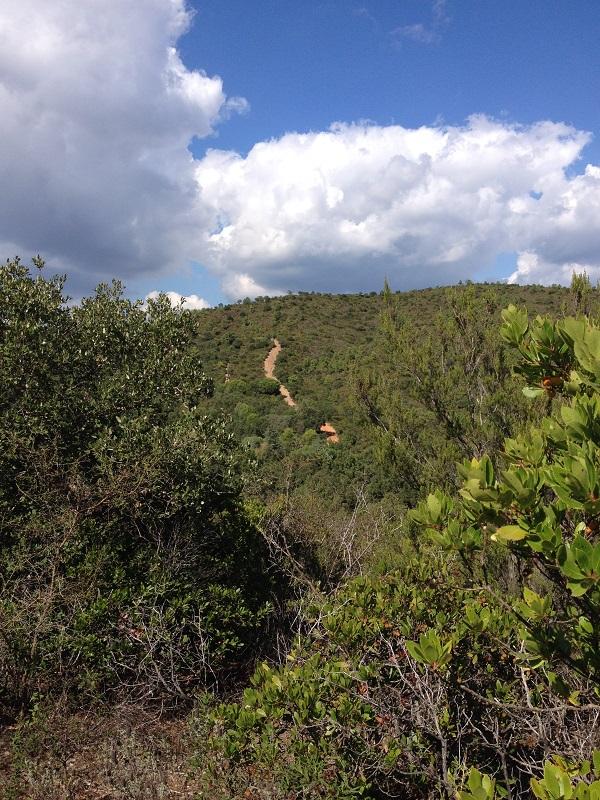 Chemin_de_traverse_colline_randonnée_massif_des_Maures