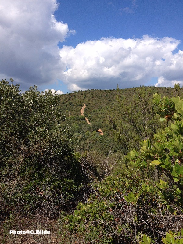 Chemin_de_traverse_colline_randonnée_massif_des_Maures_edited