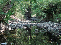 Ruisseau Maliere