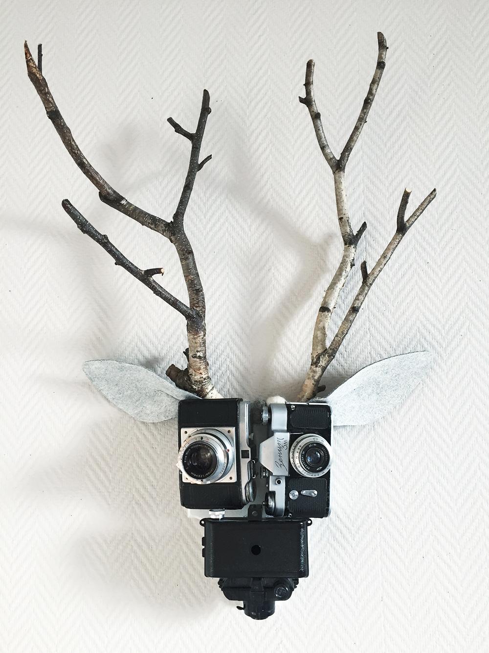 The Reindeer Senior