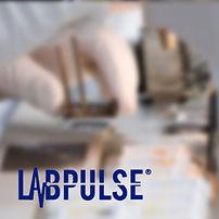 Doctor using Labpulse equpment