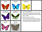 Screen Shot Butterfly Puppets.png