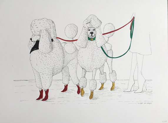 Poodles #4 Red Green - édition / 30X40 cm - Insight de Conquet