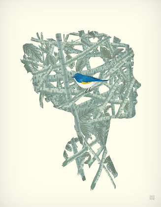Bluebird - David Avend