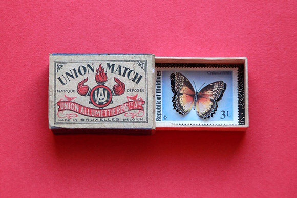 Boîte allumettes - papillon #10