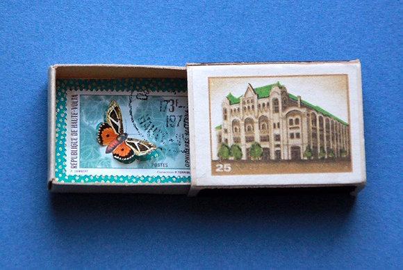 Boîte allumettes - papillon #21