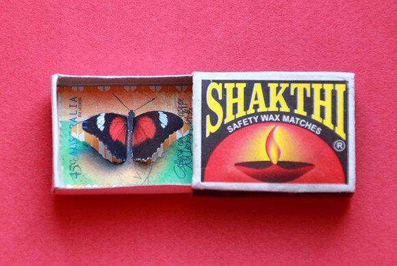 Boîte allumettes - papillon #18