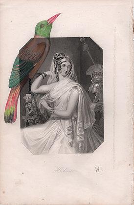 Portrait Hélène