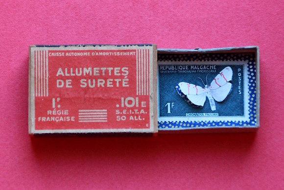 Boîte allumettes - papillon #7