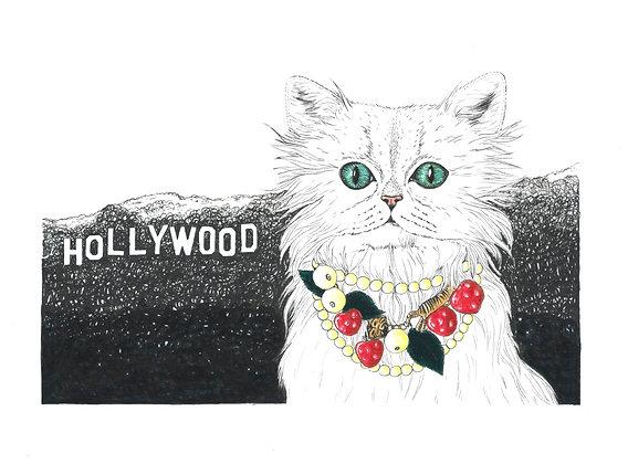 Hollywood Gucci Cat - Insight de Conquet