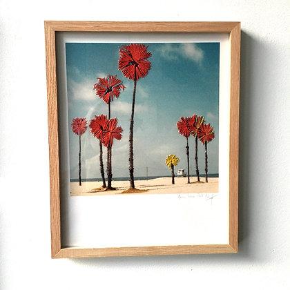 Palm trees, Santa Monica #2