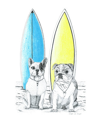 Bulldogs Surfers - Insight de Conquet