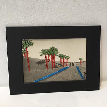 Route des palmiers