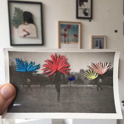 Palm trees #6
