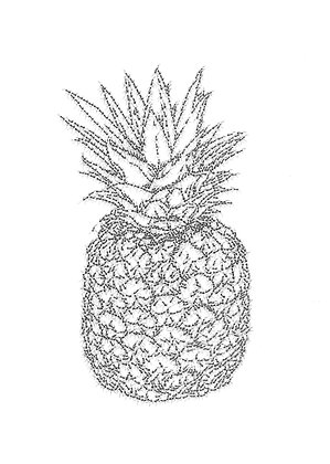 Ananas - Cyril Houplain