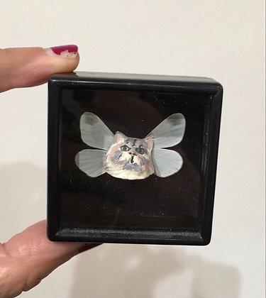 Boîte chat - papillon