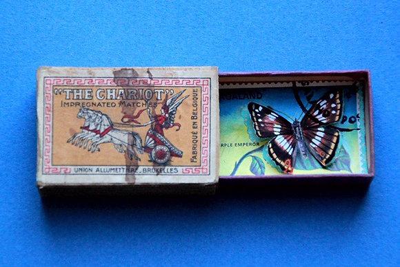 Boîte allumettes - papillon #5