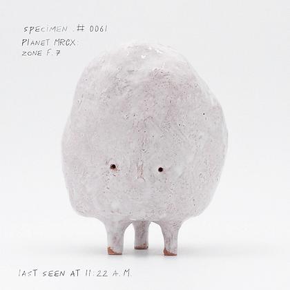 Specimen #0061