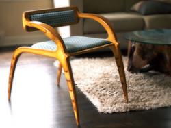 Aracnid Chair