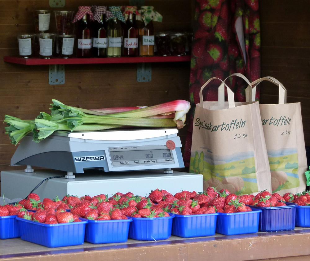 Erdbeeren selber pflücken in Bochum, Ruhrgebiet