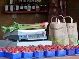 Die Erdbeerzeit 2015 naht!