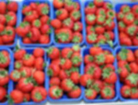 Erdbeeren zum selber pflücken in Bochum