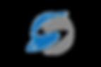logo4video.png