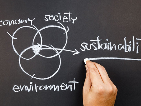 How can we teach sustainable thinking?