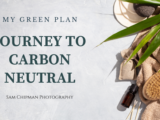 Becoming a Sustainable Wedding Photographer