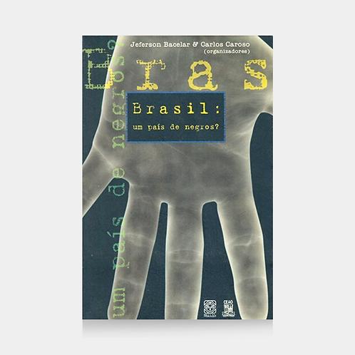 Brasil Um Pais De Negros?