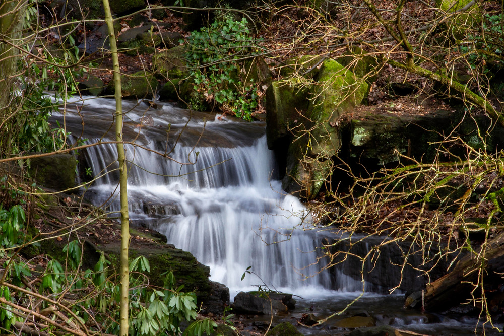 Image was created at Lumsdale Valley in Matlock, using a tripod for long exposure.