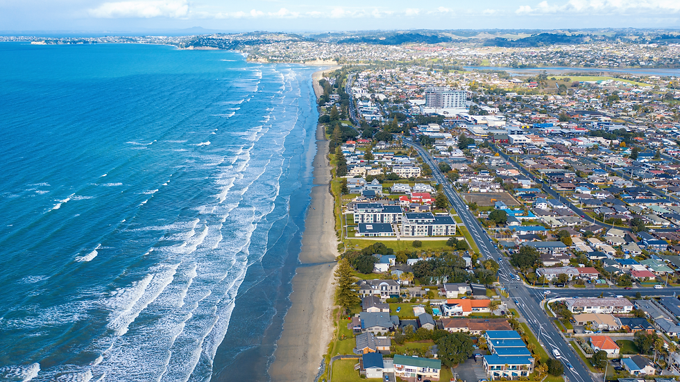 Orewa Estuary Management Plan.png