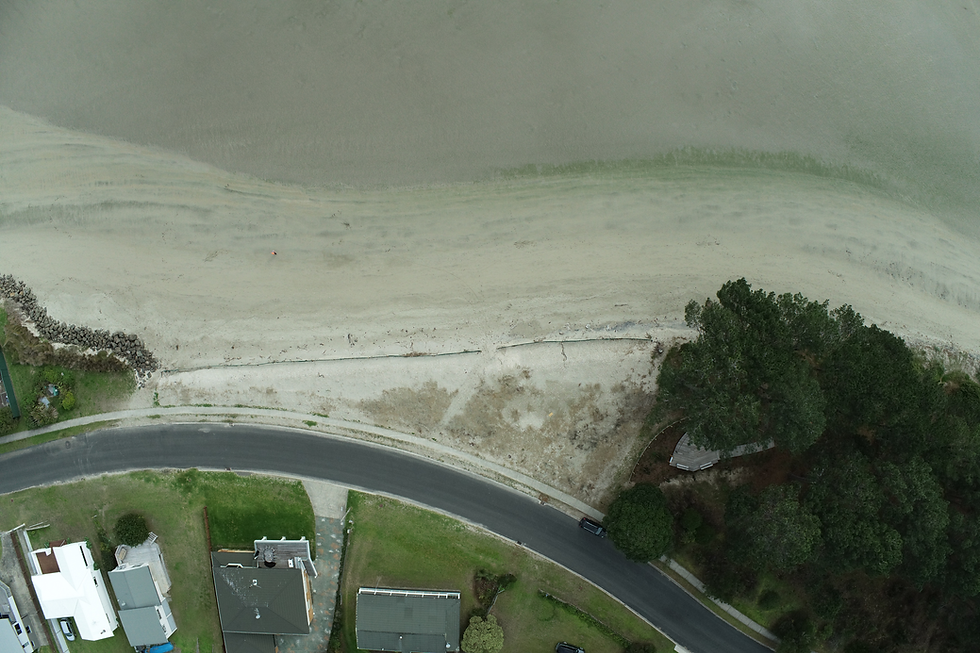 cooks beach drone.png