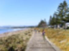 Oneroa_Typical_Boardwalk_v05.jpg