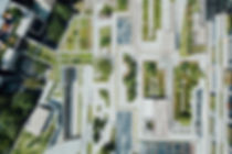 aerial veiw of green roofs.jpg