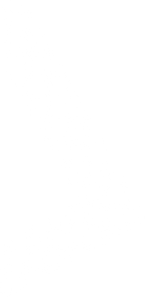 white chevron.png