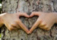 hug_heart.jpg