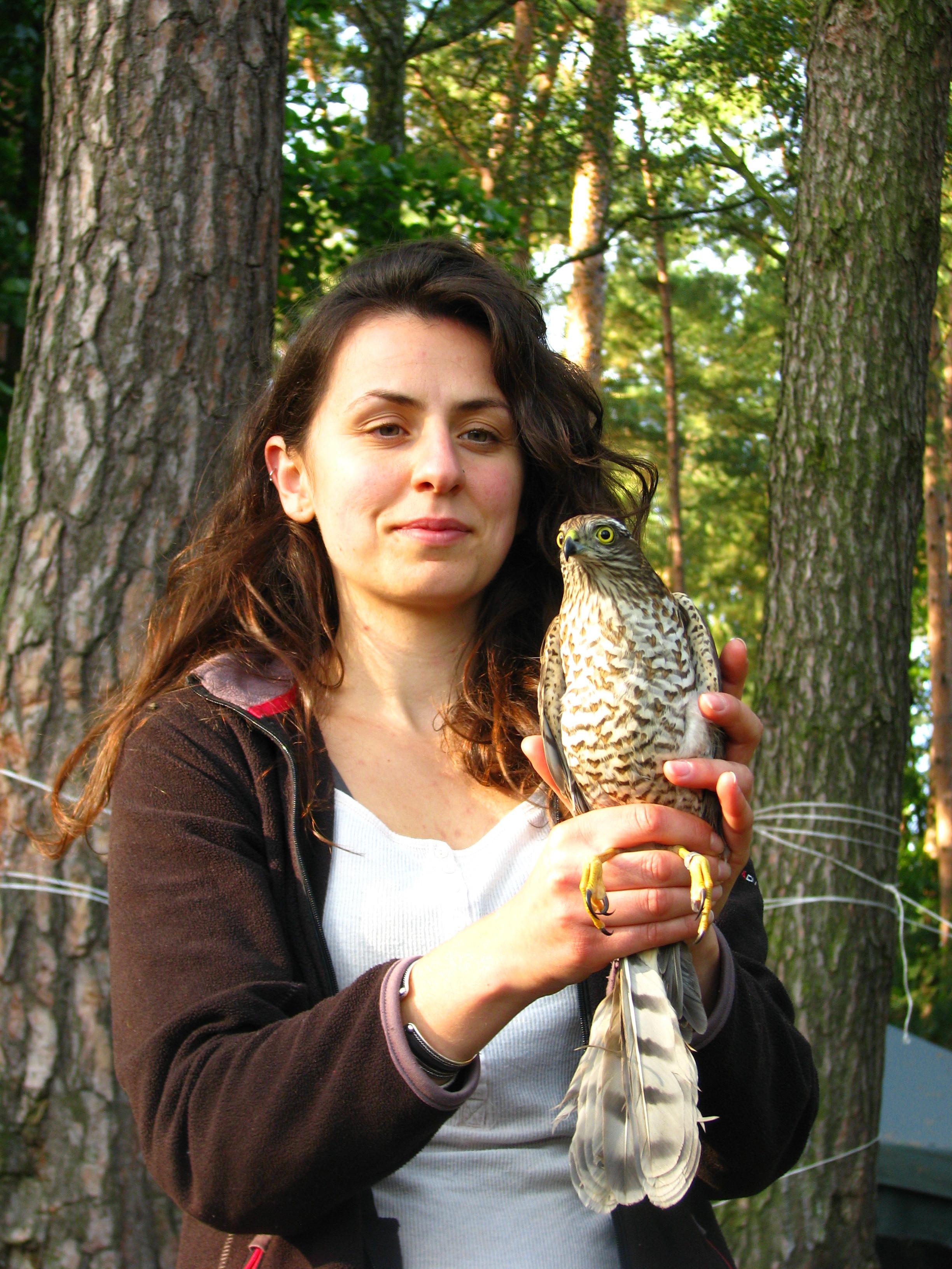 Bird Ringing Camp I