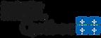 logo_MIFI.png