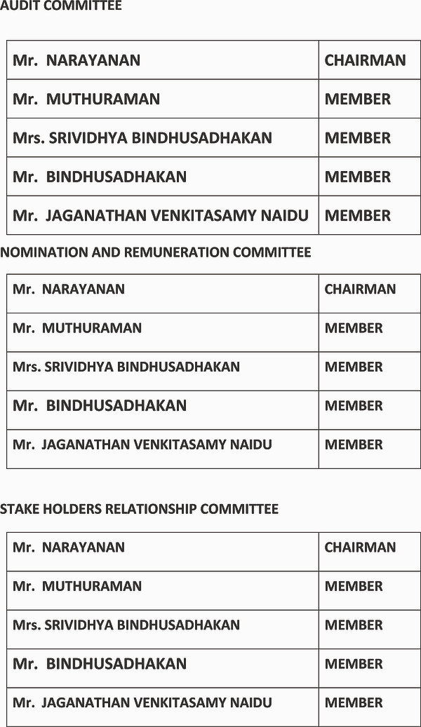 AUDIT, NOMINATION AND STAKE HOLDERS COMM