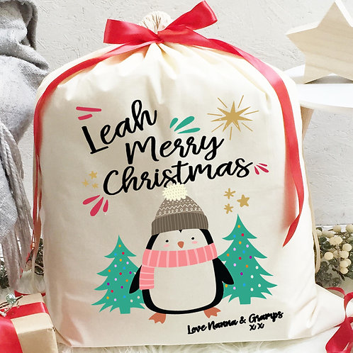 Penguin Santa Sack with ribbon and Hot Chocolate