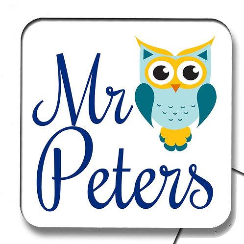 Blue Owl Teacher Coaster Gift